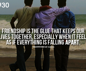 beach, friends, and falling apart image