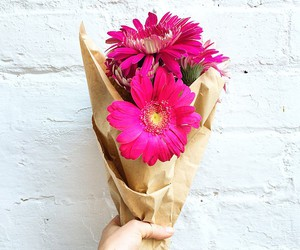 pink, flowers, and love image