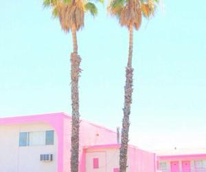 palm tree, paradise, and pastel image
