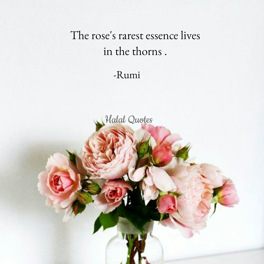 25 Images About Quotes By Rumi On We Heart It See More About Rumi