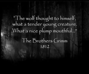 dark, words, and grimm image