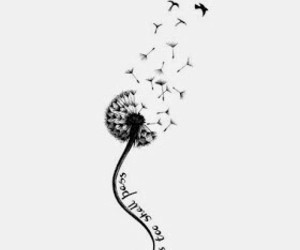 birds, dandelion, and life image