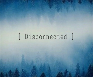 blue, forest, and disconnected image