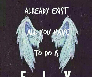 wings, fly, and tumblr image