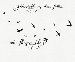 fallen, fly, and schwalben image