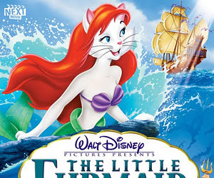 animals, ariel, and cats image