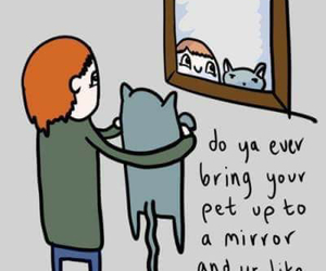 mirror, funny, and pet image