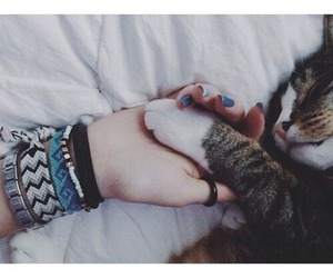 cat, girl, and pet image