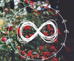 flower, hipster, and infinito image