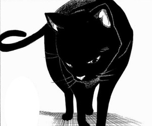 bleach, cat, and manga image