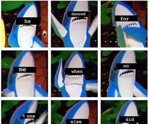 shark, super bowl, and katy perry image