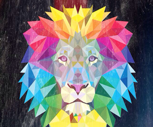 lion, wallpaper, and colorful image
