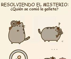 cat, misterio, and galleta image