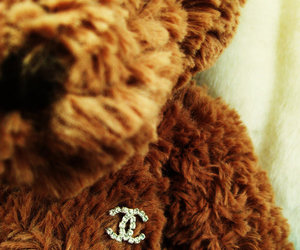 bear, chanel, and glamour image