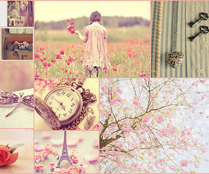 blossom, vintage, and Collage image