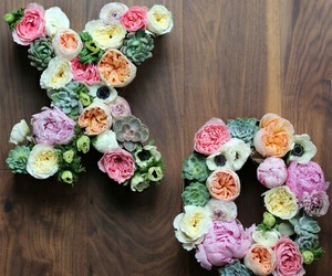 flowers, xo, and kiss image