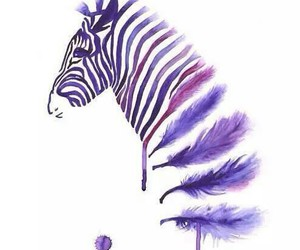 zebra, purple, and feather image