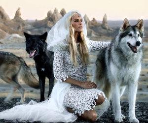 animal, beautiful, and dress image