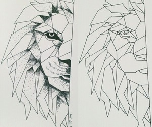 lion, draw, and drawing image