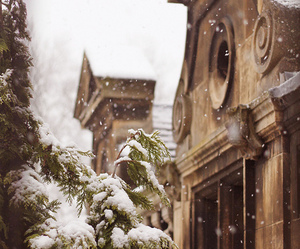 snow, winter, and building image