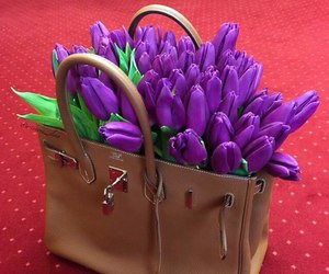 flowers, hermes, and tulips image