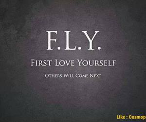 fly, life, and motivation image