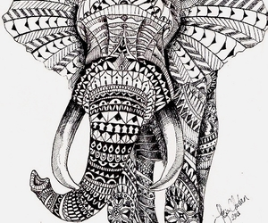 elephant, animal, and mandala image