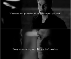 brothers and the vampire diaries image