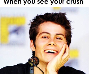 crush, teen wolf, and dylan o'brien image