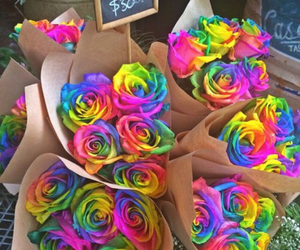 beautiful, dyed, and weheartit image