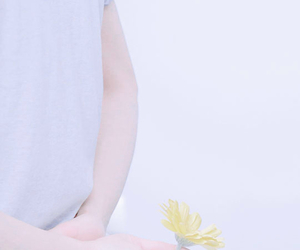 daisy, pastel, and exo image