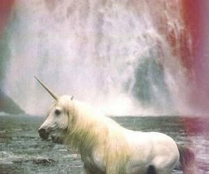 unicorn, waterfall, and wallpaper image