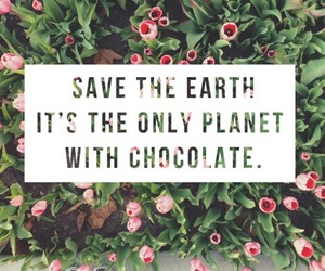 chocolate, cute, and quote image
