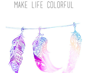 feather, colorful, and life image