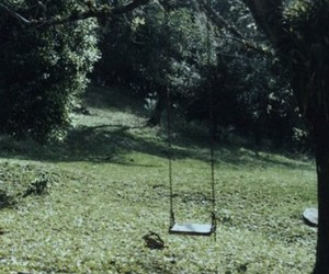 swing, nature, and tree image
