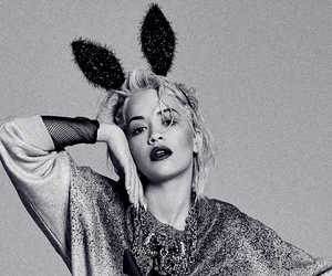 adidas, blonde, and bunny image