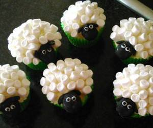 marshmallows and sheep image