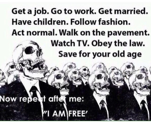 free, freedom, and society image