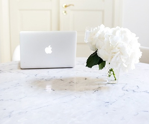 flowers, laptop, and white image