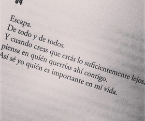 frases and books image