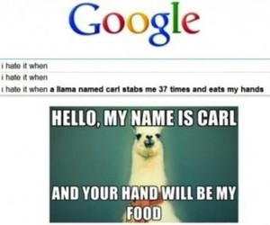 funny, google, and lol image