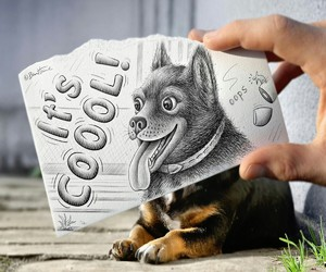 cool, dog, and draw image