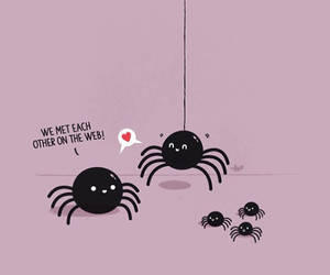spider, web, and cute image