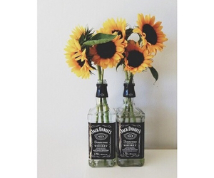flowers, jack daniels, and sunflower image