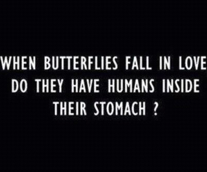 butterfly, love, and humans image