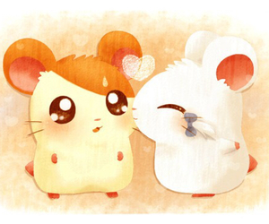 couple, hamster, and love image