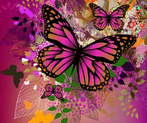 art, pink, and butterfly image