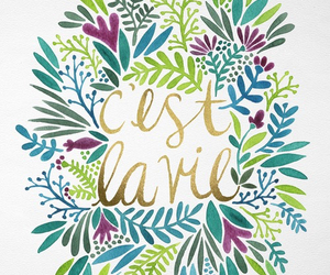 quotes, french, and c'est la vie image
