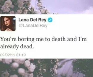 lana del rey, quote, and twitter image