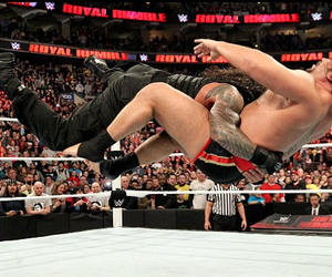 samoan, spear, and roman reigns image